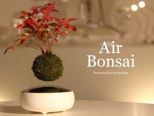 ラピュタかよっ!空中浮遊する盆栽「Air Bonsai」がクール過ぎる