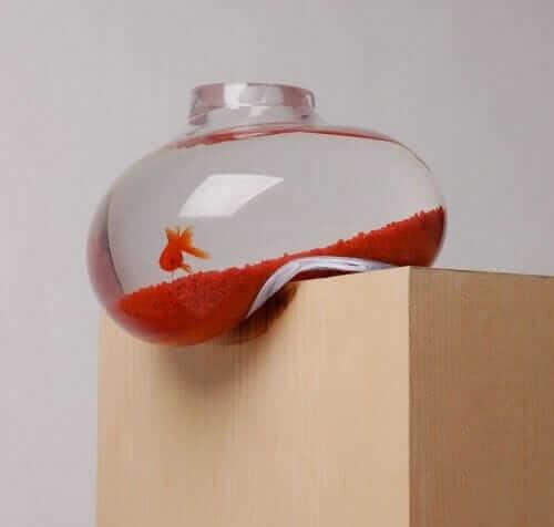 Psalt Design Bubble Tank